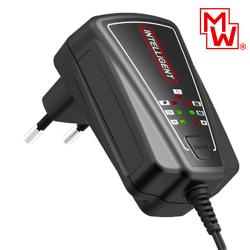 04.01.0040_battery_lead__charger_car_1A