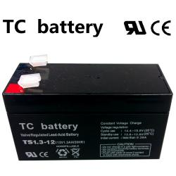 07.02.0076_BATTERY_TS1.3AH_12V
