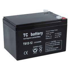 07.02.0078_TC_12V_12AH_LEAD_ACID_BATTERY_PALS