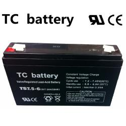 07.02.0081_BATTERY_TS7_5AH_6V