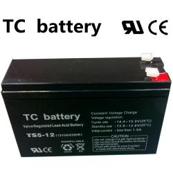 07.02.0084_BATTERY_TC12V_5A_15x5cm